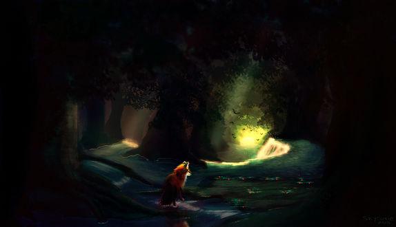 Обои Лисица в лесной чаще, by Skysurie