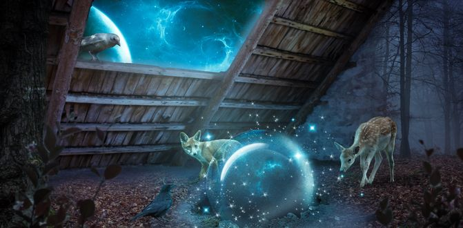 Обои Лиса и олененок смотрят на упавшие звезды, by danieloooo