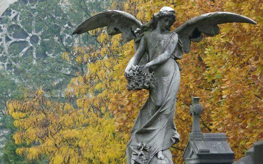 Обои Каменный ангел на фоне собора и дерева с желтыми листьями осенью