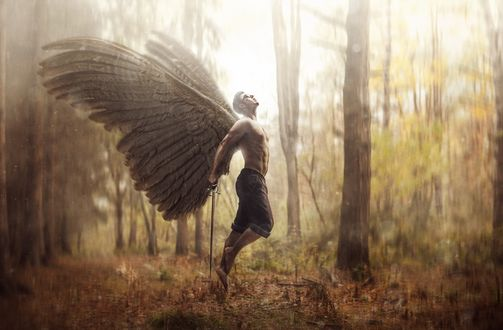 Обои Мужчина-ангел в осеннем лесу пытается взлететь, фотограф Роберт Корнелиус