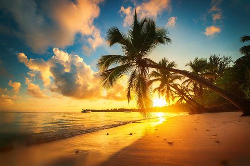 Обои Красивый тропический восход солнца над морем, фотограф Valentin Valkov