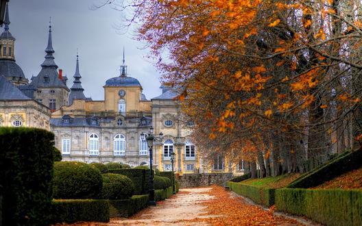 Обои Royal Palace of La Granja de San Ildefonso, Spain / королевский дворец Ла Гранха-де-Сан-Ильдефонсо, в Испании и сад с подстриженными кустами осенью. Деревья с опавшими осенними листьями на дорожке