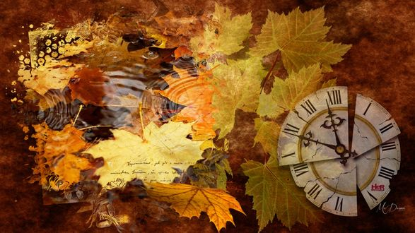 Обои Коллаж - часы и осенние листья под дождем