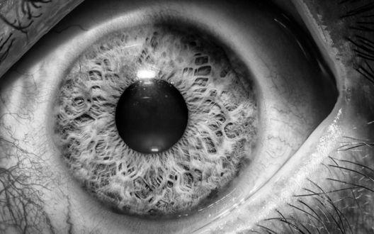 Обои Серый глаз с растянутыми веками крупным планом