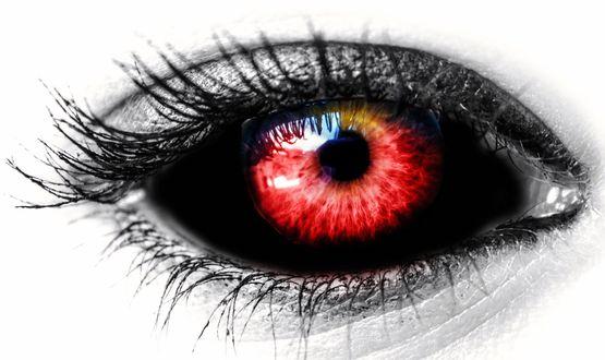 Обои Красный глаз с черным яблоком