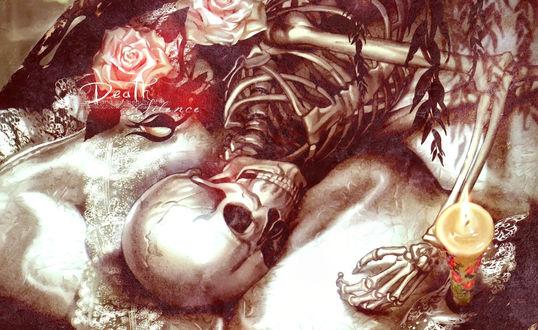 Обои Скелет спит в розах и со свечей на шелковой простыне (Death Silence)