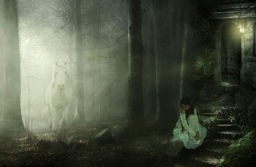 Обои Девушка сидит в лесу у домика, из тумана появляется белая лошадь
