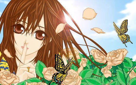 Обои Юки Кросс / Yuuki Cross из аниме Рыцарь-вампир / Vampire Knight в окружении роз и бабочек в солнечную погоду