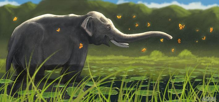 Обои Слон стоит в пруду в окружении желтых бабочек, by Mladjo00