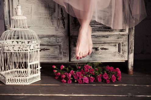 Обои Девушка, свесив ножки, сидит на старом комоде, где на полу стоит клетка и лежат розы, фотограф Nora Drugan