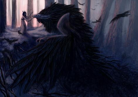 Обои Девушка - демон гладит клюв огромного ворона в лесу