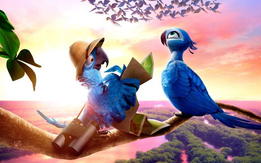 Обои Blu / Голубчик / и Jewel / Жемчужинка из мультфильма Rio 2 / Рио-2