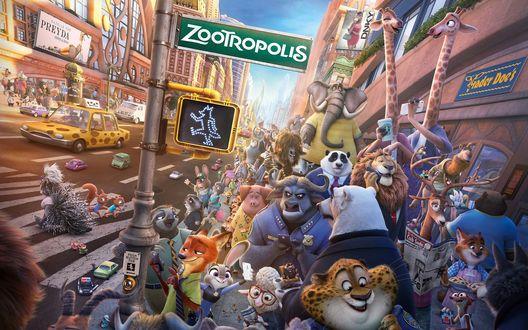 Обои Все герои мультфильма Zootopia / Зверополис