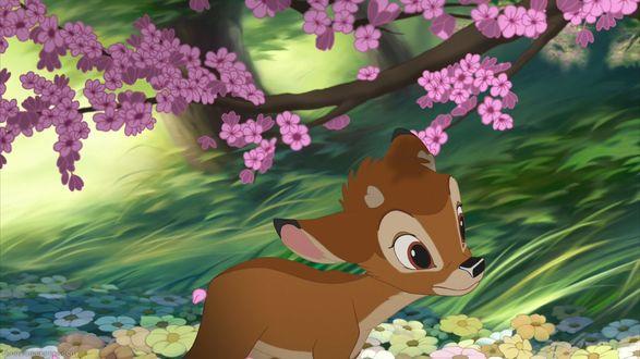 Обои Олененок Bambi / Бэмби из коллекции Disney Dreams / Диснеевские Мечты