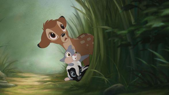 Обои Bambi / Бэмби из коллекции Disney Dreams / Диснеевские Мечты