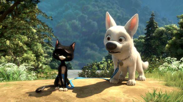 Обои Собака породы Белая швейцарская овчарка - главный персонаж американского полнометражного анимационного фильма 2008 года и бродячая кошка Варежка, мультфильм Вольт производства студии Walt Disney / Уолт Дисней