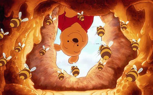 Обои Winnie the Pooh / Винни Пух в поисках меда, мультфильм Disney / Диснея Winnie the Pooh / Винни Пух