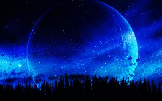 Обои Силуэты елей на фоне ночного неба и планеты