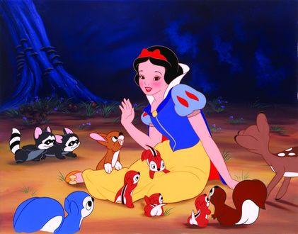 Обои Snow White / Белоснежка из мультфильма Snow White and the Seven Dwarfs / Белоснежка и семь гномов, сидит на земле в окружении животных