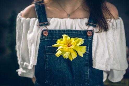 Обои Девушка в кофточке и джинсовом комбинезоне, в карман которого вставлен желтый цветок