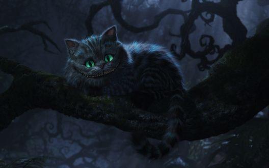 Обои Cheshire Cat / Чеширский кот из фильма Alice Through the Looking Glass / Алиса в зазеркалье (производства Walt Disney Studios)