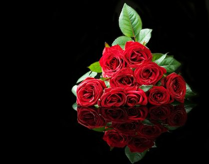Обои Букет красных роз на черном фоне