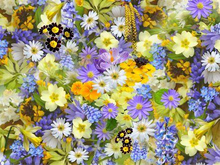 Обои Много разных не очень ярких, но красивых цветов