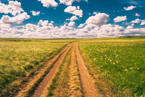 Обои Грунтовая дорога посреди поля, ведущая к облачному небу