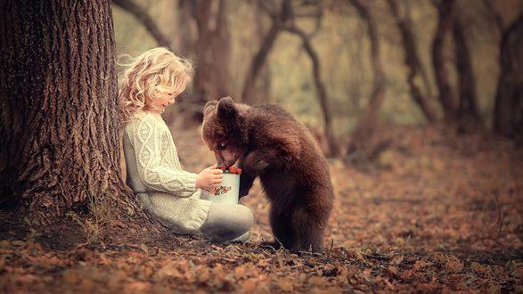 Обои Медвежонок с аппетитом ест землянику из кружки, которую ему протягивает девочка, фотограф Марианна Смолина