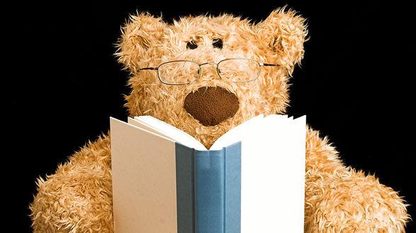 Обои Мишка Тедди в очках читает книгу