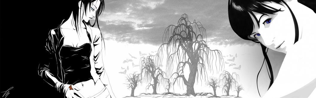 Обои Две черно-белые девушки стоят напротив друг друга и засохшие деревья без листьев под небом