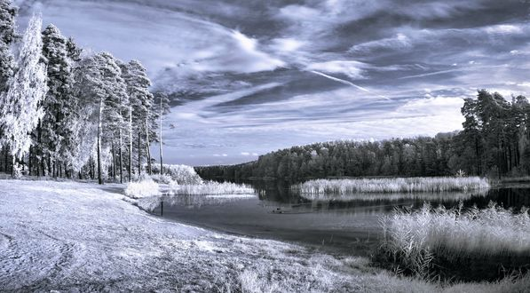 Обои Белый лес, трава и речка под облачным фиолетовым небом