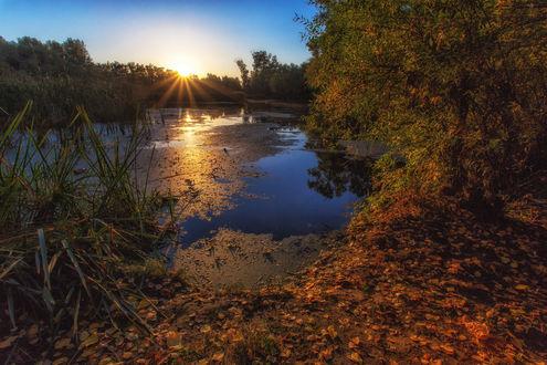 Обои Теплое осеннее утро над рекой. Фотограф Сагайдак Павел
