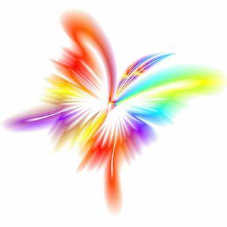 Обои Вектор, разноцветная бабочка на белом фоне