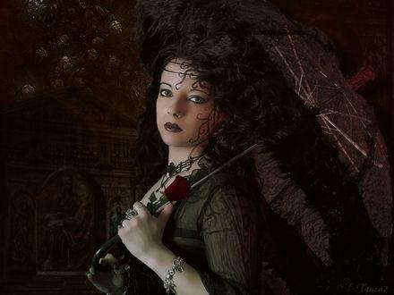 Обои Девушка с красной розой, под зонтиком, ночью в саду, by tinca2