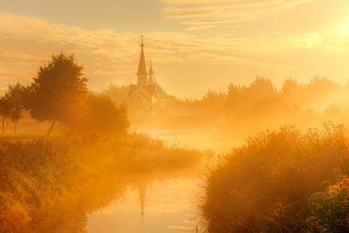 Обои Осеннее утро в парке, Санкт-Петербург, фотограф Эдуард Гордеев