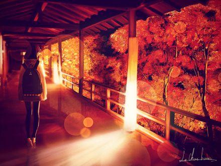 Обои Девушка с рюкзаком смотрит на осенние деревья, стоя на веранде дома