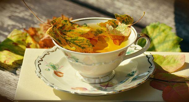 Обои Чай с осенними листочками на блюдце