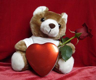 Обои Игрушка мишка Тедди с розой и сердечком