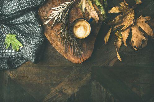 Обои Чашка кофе, теплый свитер и осенние листья лежат на деревянной поверхности, фотограф Anna Ivanova