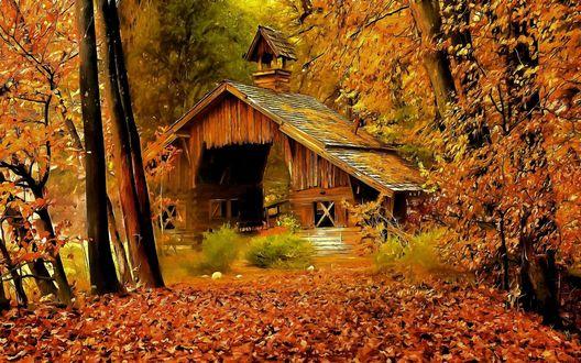 Обои Разрушенный дом в осеннем лесу