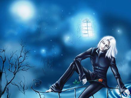 Обои Парень блондин с розой сидит на ограде возле дома с горящими окнами ночью под луной