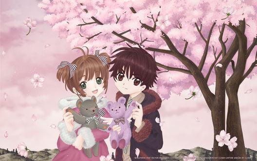 Обои Сакура Киномото / Sakura Kinomoto и Сяоран Ли / Shaoran Li из аниме Сакура — собирательница карт / Cardcaptor Sakura с плюшевыми мишками в руках на фоне цветущей сакуры