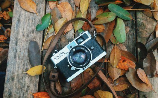 Обои Фотоаппарат лежит на деревянной поверхности в окружении осенней листвы, фотограф Louis Auster