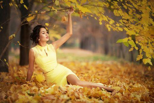 Обои Девушка в желтом платье среди осенних листьев