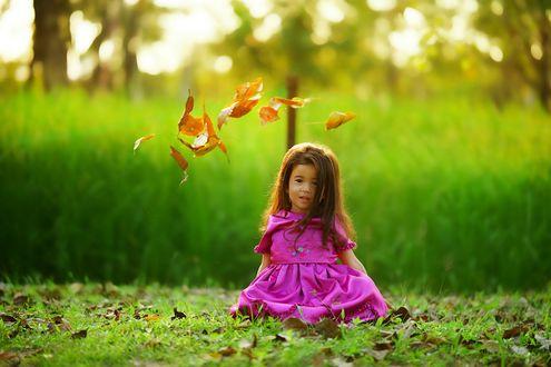 Обои Девочка и осенние листья на размытом фоне