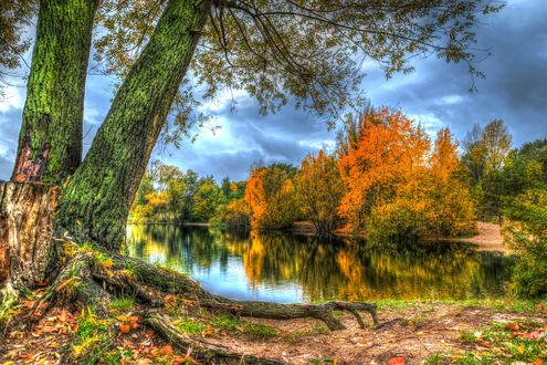 Обои Осенние деревья у водоема и пасмурное небо