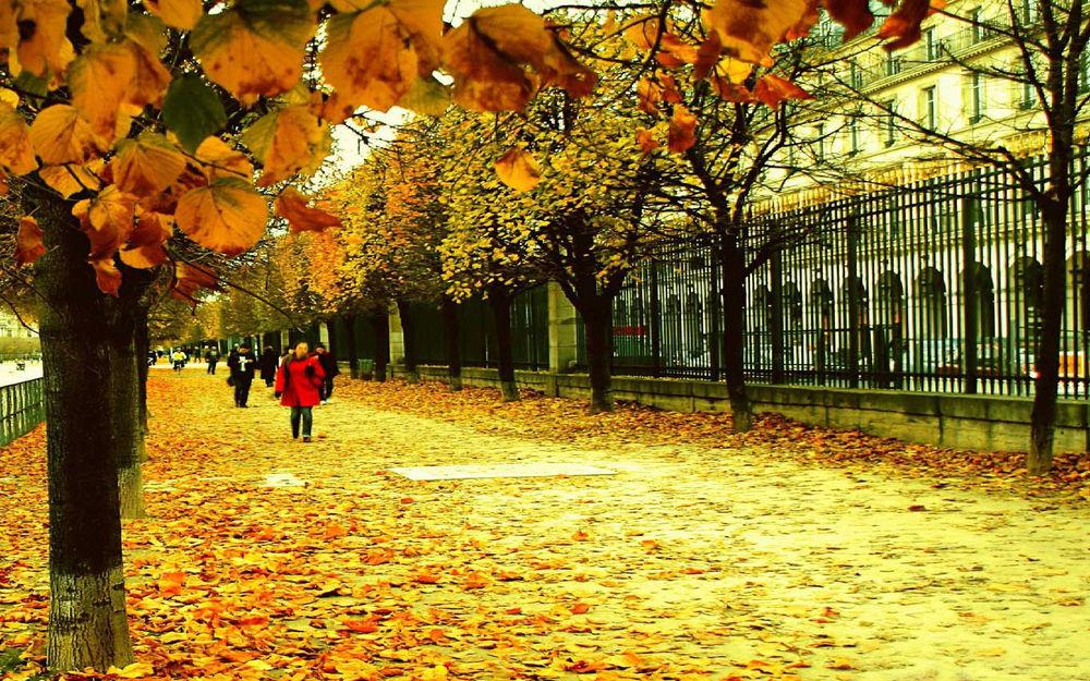 Обои для рабочего стола Девушка в красном и другие люди идут по тротуару осенью по осенним листьям