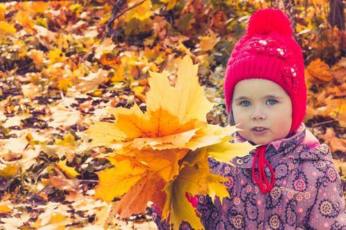 Обои Девочка с букетом осенних листьев