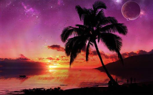 Обои Пальма на закате и люди на берегу океана на фоне звезд и планет